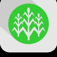 Pertanian & Perkebunan